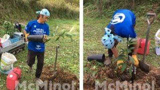 南伊豆アボカドプロジェクト – 第1回植樹祭 その2