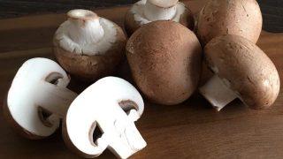 ブラウンマッシュルーム brown mushroom