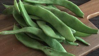 幅広インゲン wide green beans