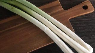 長ネギ Japanese green onion