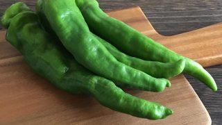 韓国とうがらし Korean green pepper