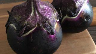 丸ナス round eggplant