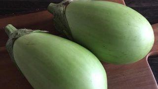緑ナス green eggplant