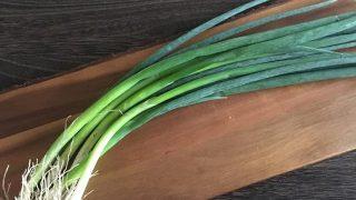 小ネギ green onion