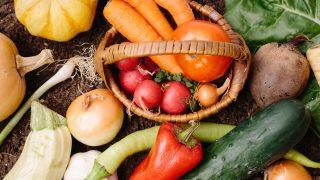 有機野菜の美味しさの理由