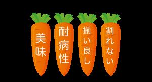 ニンジンの品種と特徴